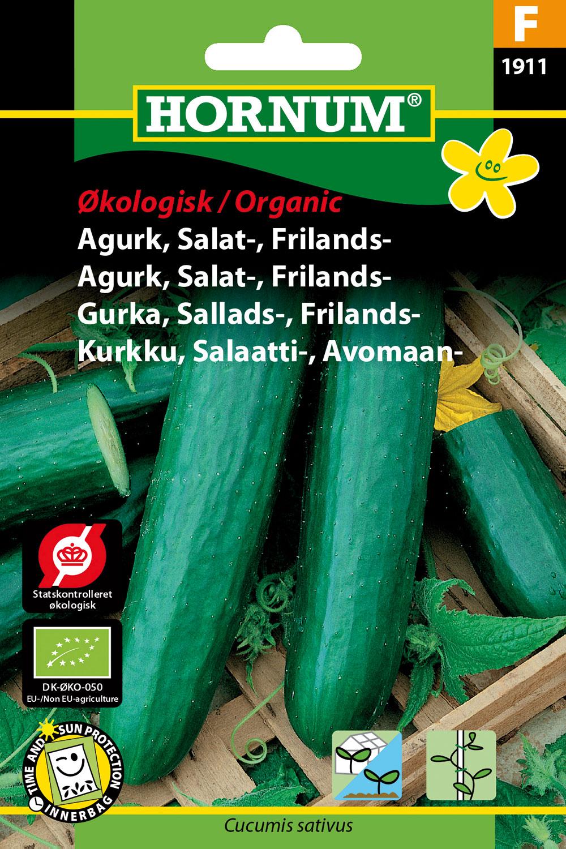 """Image of   Hornum Økologisk Agurk, Salatagurk, Frilands, """"Sonja"""""""