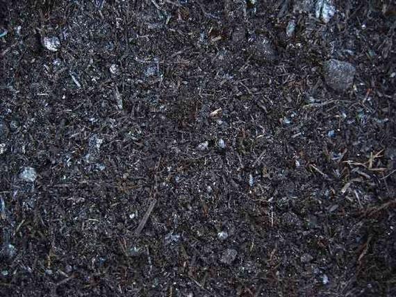 Image of   GreenBio Champignonmuld - Bigbag á 1000 liter
