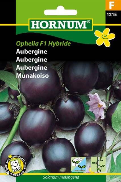 Aubergine, Ophelia F1 Hybride