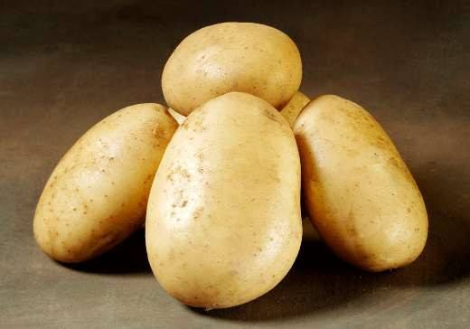 Folva - læggekartofler 1.5 kg.