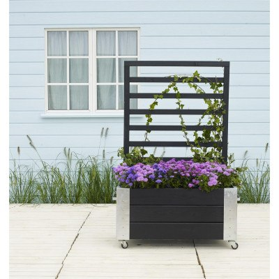 PLUS Cubic blomsterrumdeler med espalier - 87x50x130cm