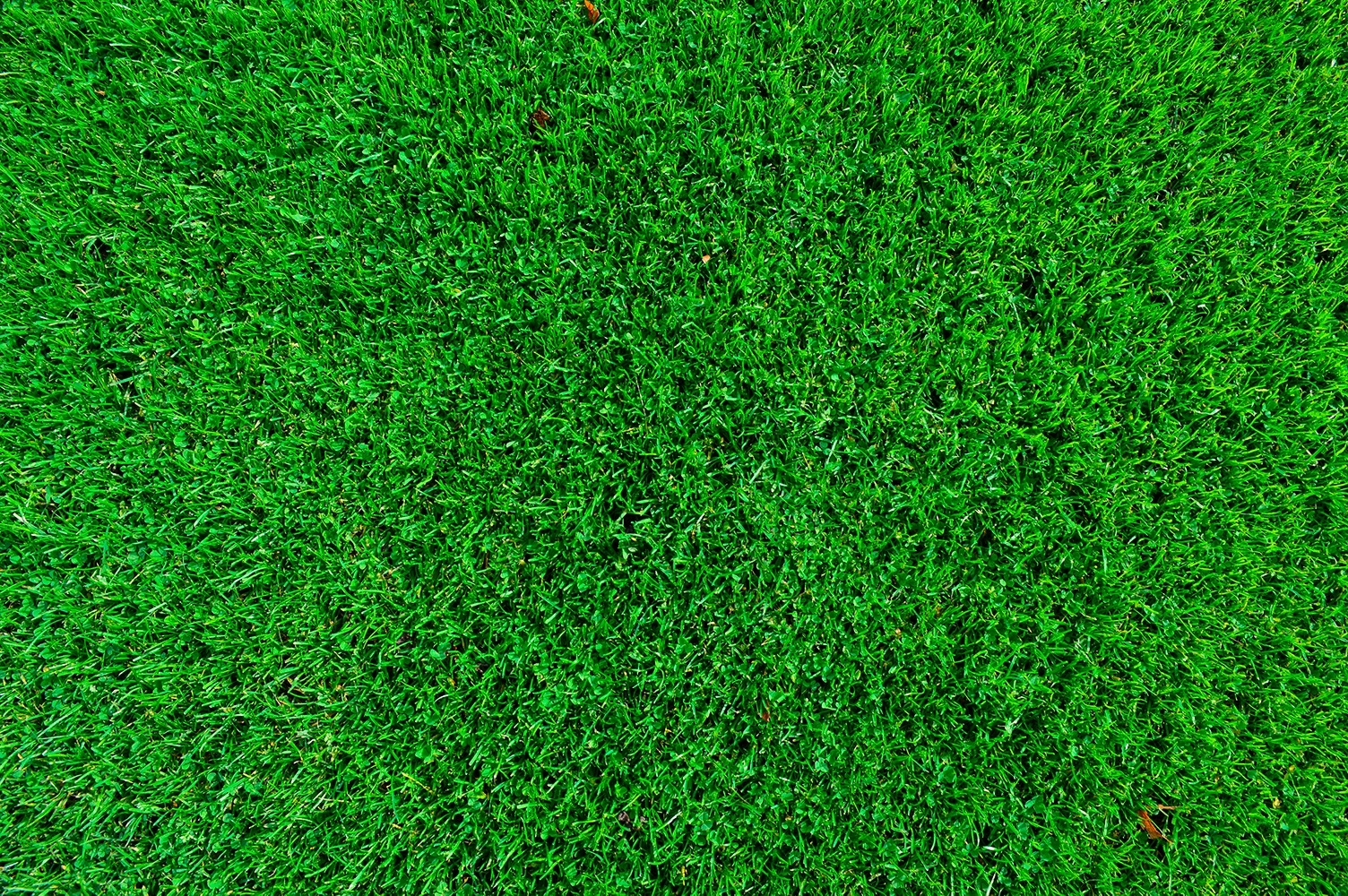 Image of   GreenBio Topdressing Golf+ - Bigbag á 1000 liter