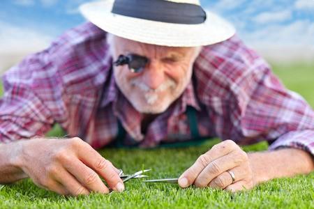 Græsset er altid grønnere hos din nabo fordi...