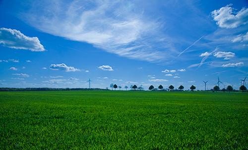 GreenBio bæredygtig muld – få rene råvarer og god samvittighed