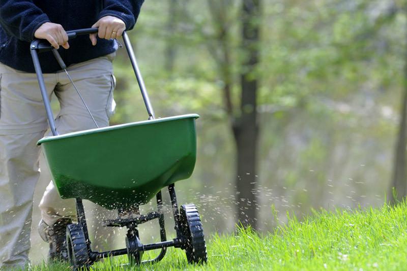Guide: Gødning af græsplænen – sådan gøder du plænen korrekt
