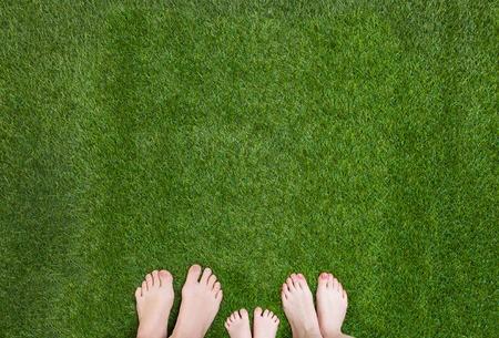 Få en flot græsplæne - topdressing for begyndere
